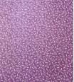 cucurbitacée - violet