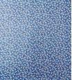 cucurbitacée - bleu nuit