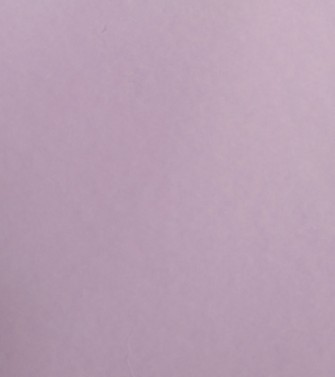 Feuille unie violet - hyacinthe rigaud