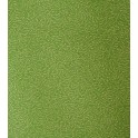 étoile filante  - doré sur fond vert clair