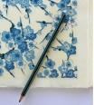 branche de cerisier - bleu sur blanc