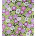 floraison de cerisier - fond vert